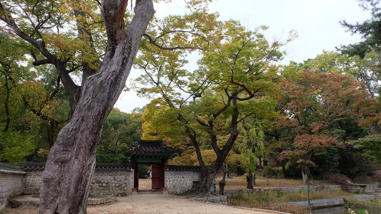 Khu vườn bí mật Huwon